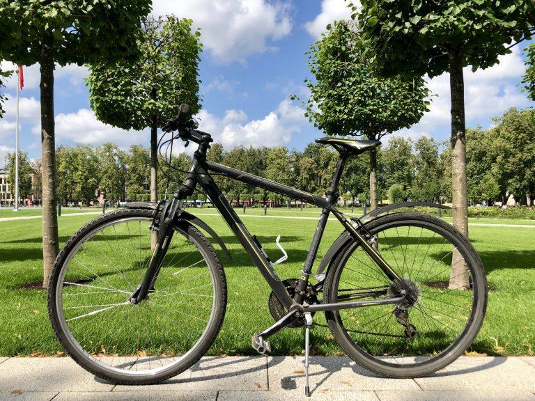 Univega Hybrid bike for men in the background of the park in Vilnius for rent