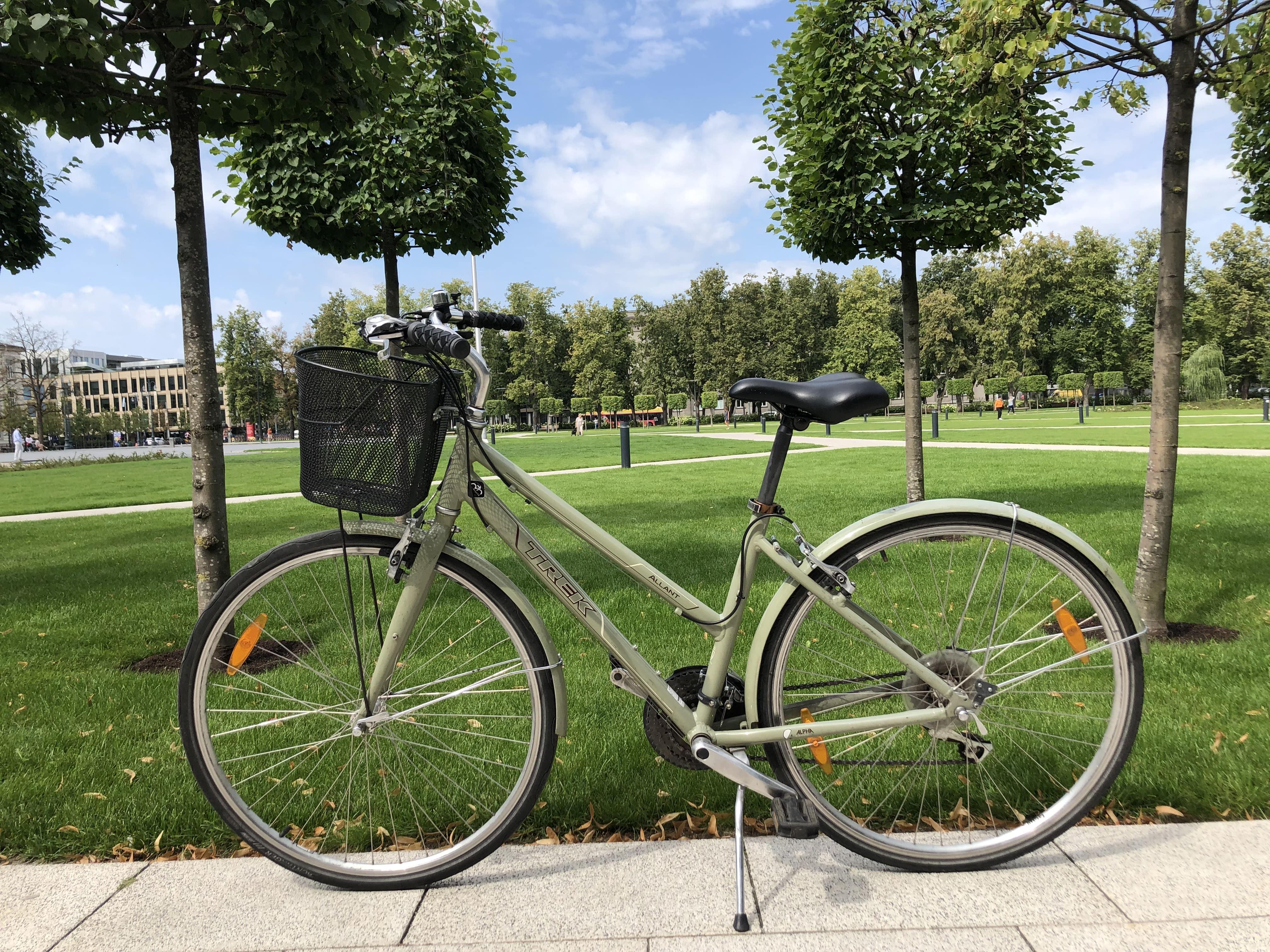 City bike Trek for women in the background of park for rent Vilnius