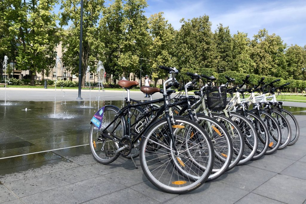 Variety of bikes for rent in Vilnius in the background of the park